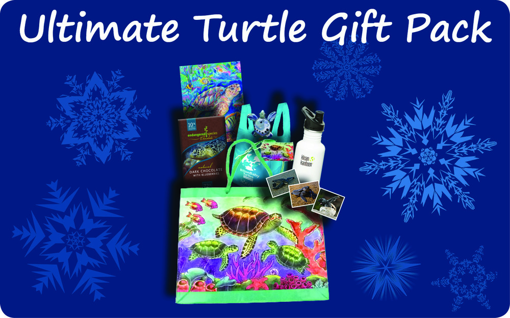 Ultimate Turtle Gift Pack Holiday 2014.jpg