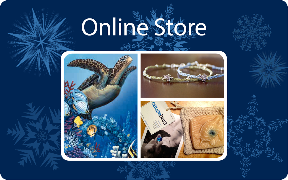 BBT Online Store Holiday 2014 FB.jpg