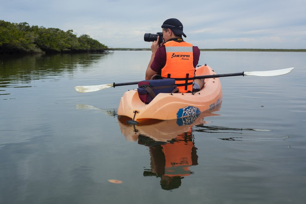 Copy of Copy of Day 6: We will explore Magdalena Bay's mangroves to look for birds.