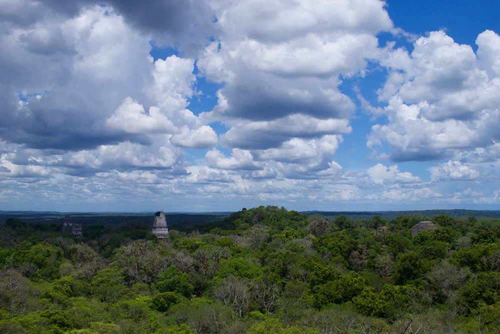 Spend all day at Tikal, having a picnic lunch and climbing to the top of the temples for a great view.