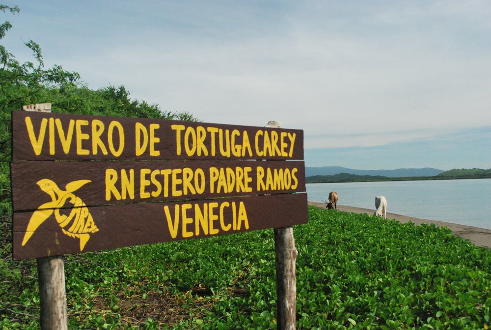 Padre Ramos is a beautiful and quiet estuary in the northwest corner of the country