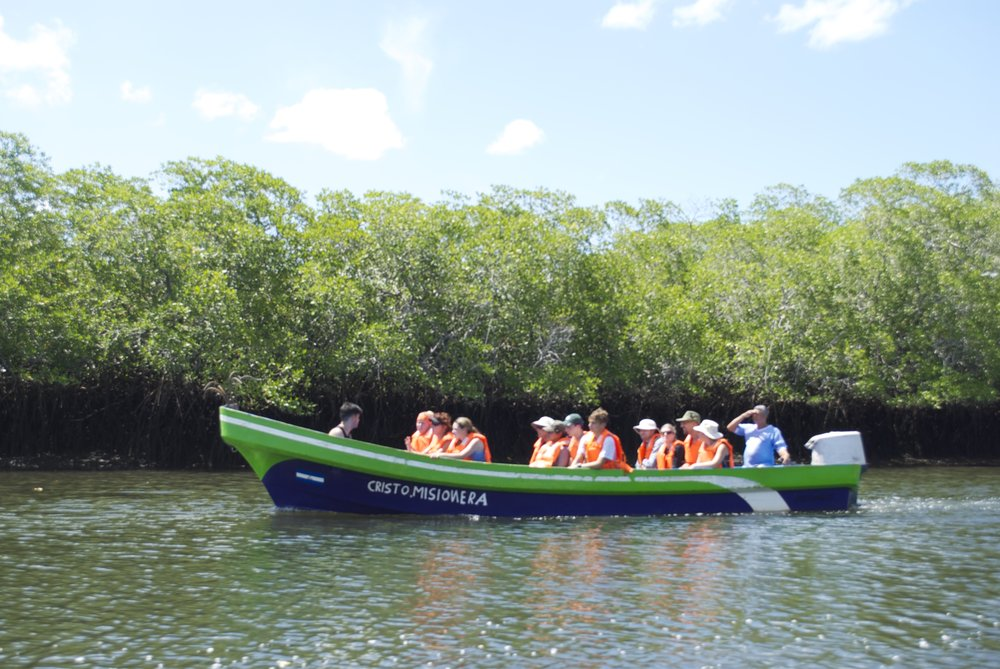 Explore the fascinating mangroves by boat and kayak in the afternoon.