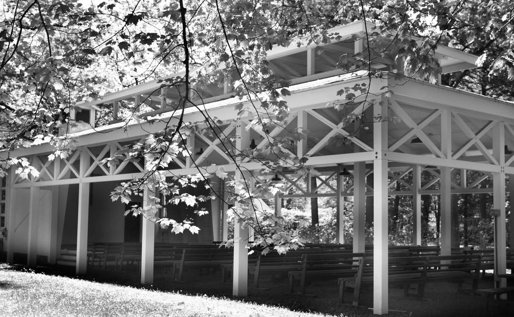 TabernacleTrees.jpg