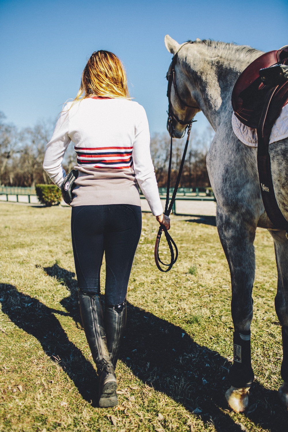 equine-couture-regatta-breeches.jpg