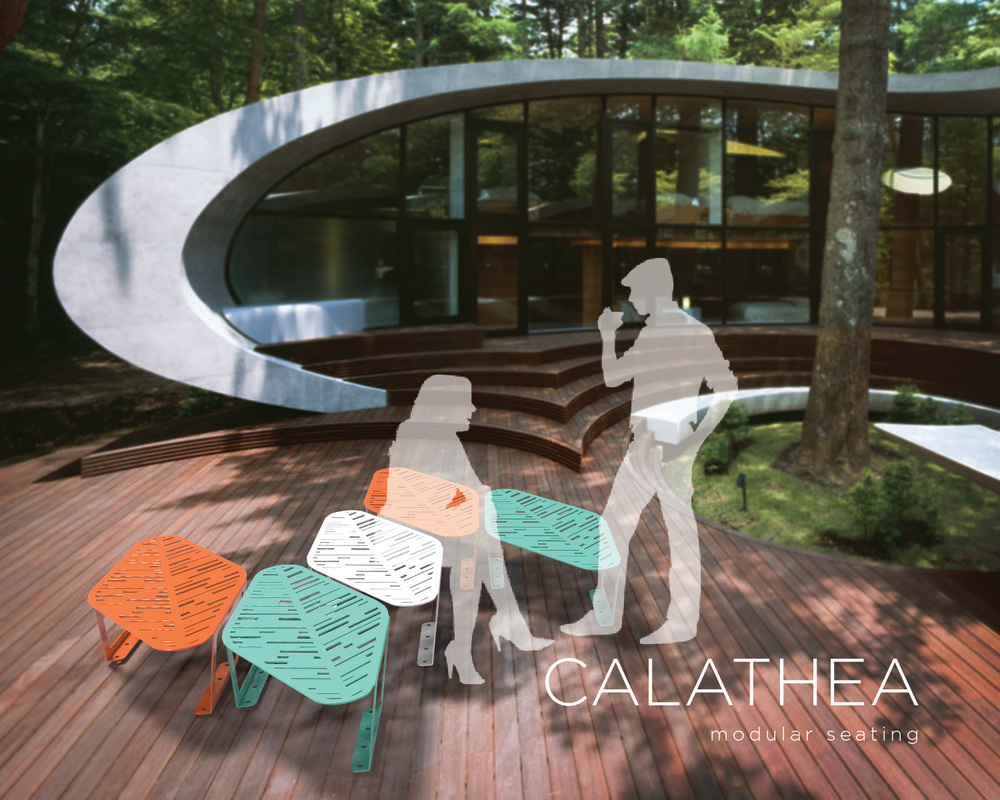 portfolio-calathea-08 new.jpg