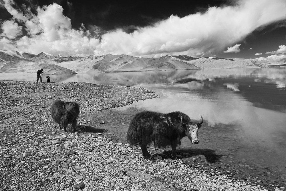Pamir Highland, 2018