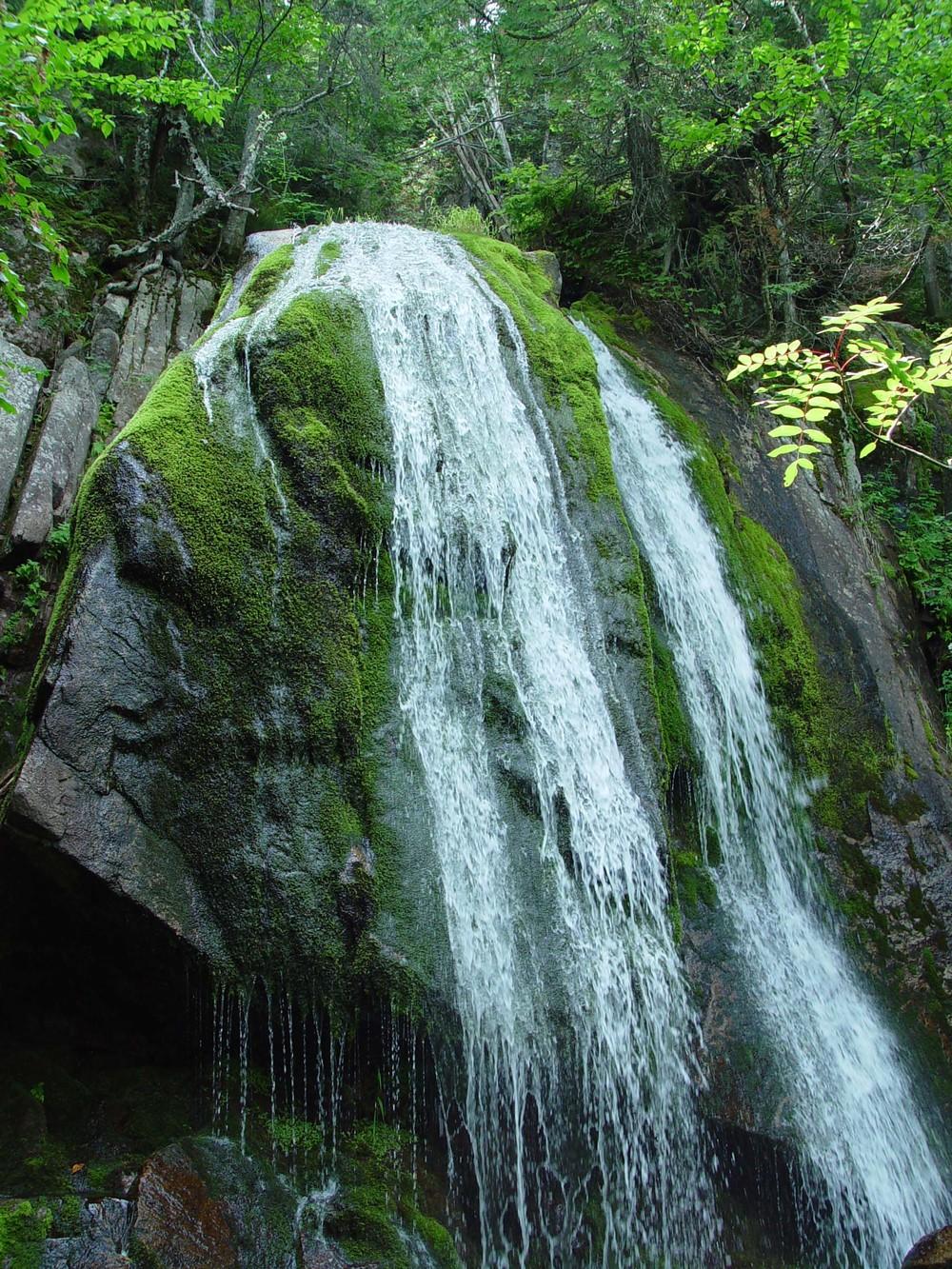 Green Falls.jpg