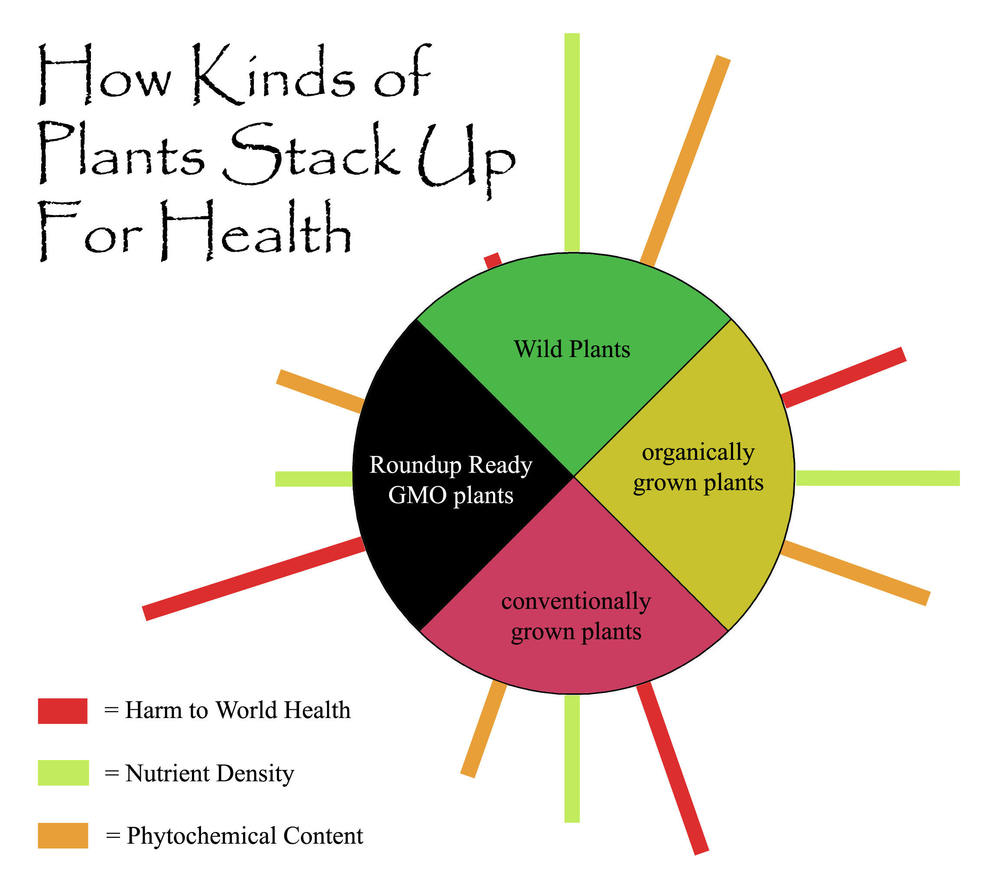 how plants benifits humans Animals and humans depend on plants plants benefit from animals all students write about the plants and animals in the environment 2.