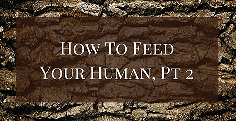 ReWild Yourself Podcast 77 How to feed your human part 2.jpg