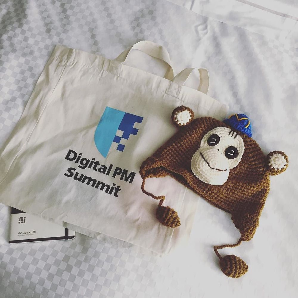 Gotta have your @mailchimp knit cap of course #swag #digitalpmsummit #dpm2015 by downincircles.jpg