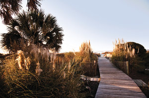 Isle of Palms in Charleston, SC