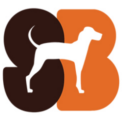 Standard Beagle