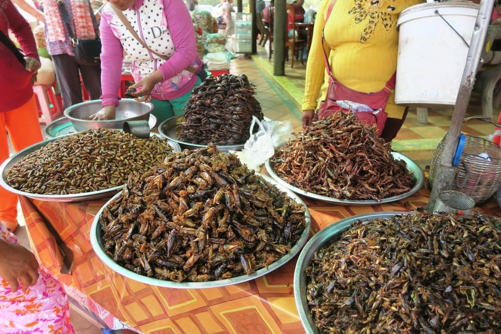 fried-insects-cambodia5.jpg
