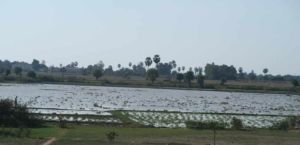 cambodian-countryside2.jpg