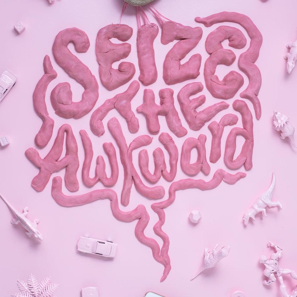 Seize-The-Awkward-sq.jpg