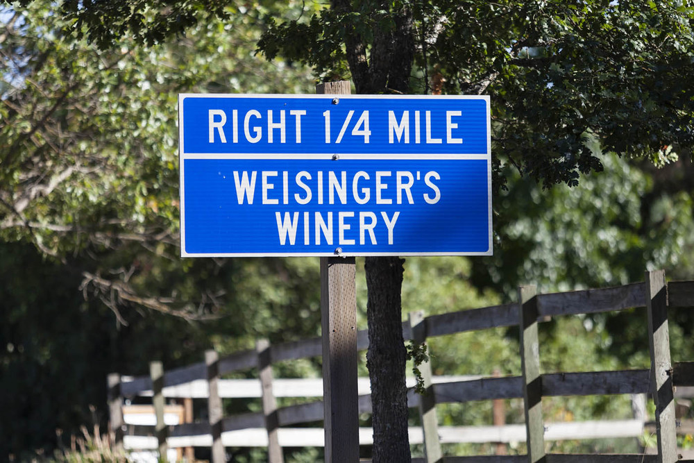 Weisinger Family Winery_0508_web1400.jpg