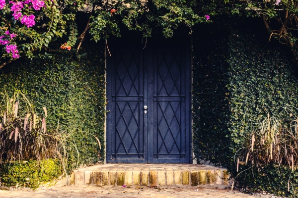 This is not one of my doors, don't I wish! It's a lovely photo from Unsplash, photographer credited below.