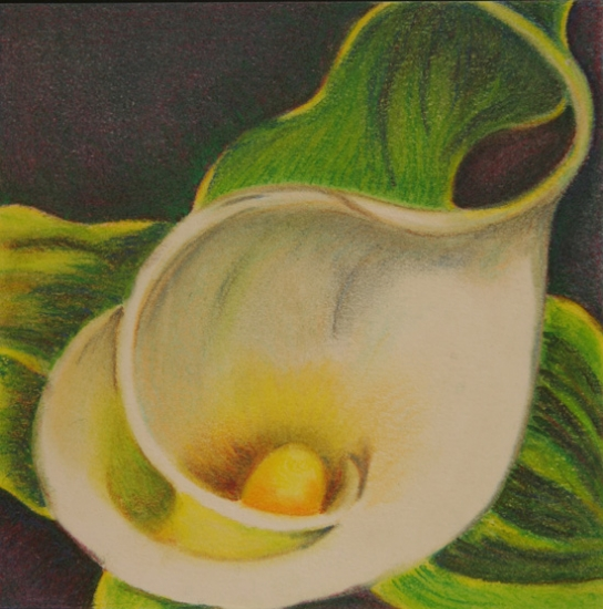"""Pastel from """"Calla Triptych"""""""