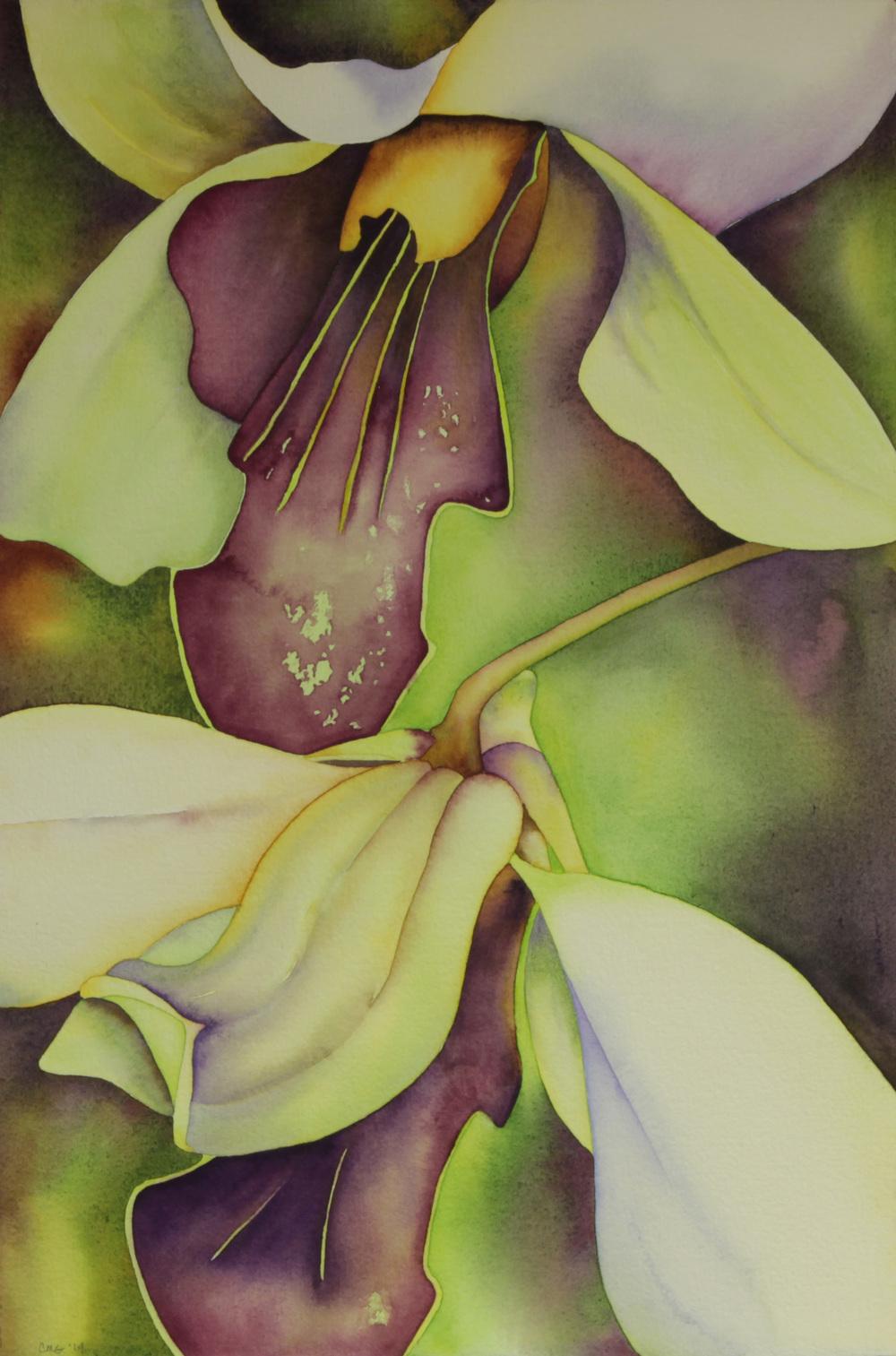 Kauai Orchids II