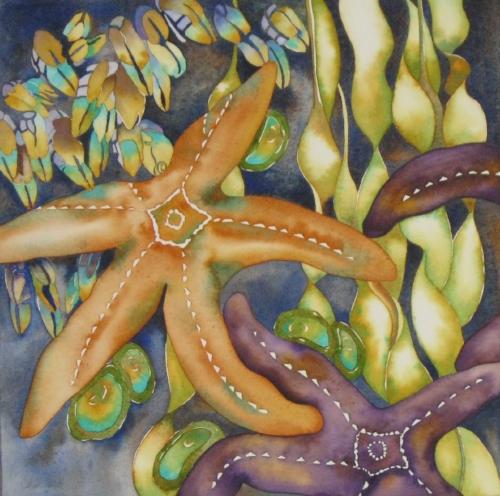 Oregon Ochre Starfish