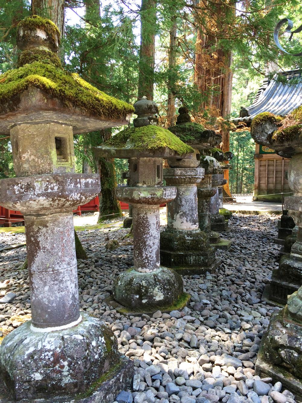 japan trip spring2015 1.jpg