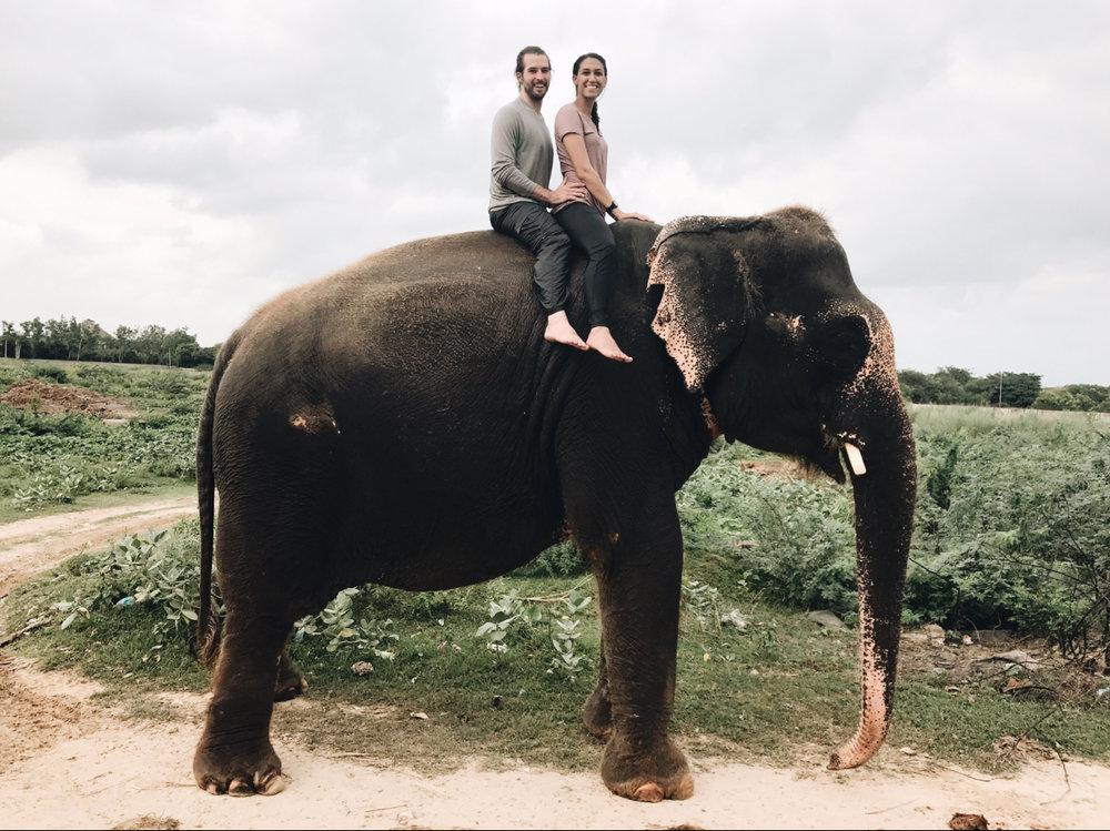 Jordyn.Kelly-Elephant-Photo