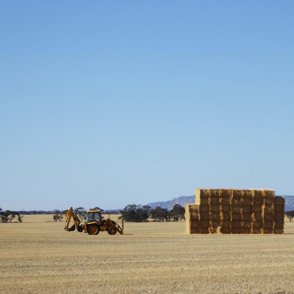 Western Victoria Landscape Assessment