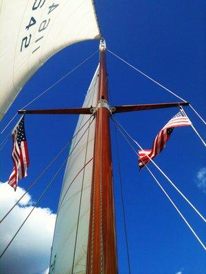 Ventura's mast glistening against the blue sky.