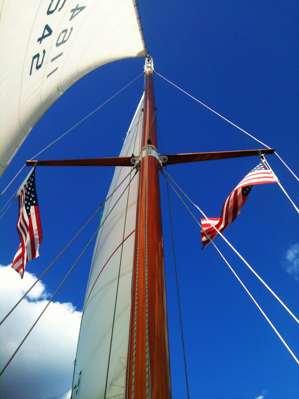 Ventura's beautiful mast glistening against the blue sky.
