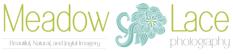 Meadow Lace Photography