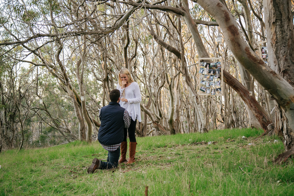 slo san luis obispo california proposal wedding photographer 10