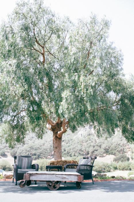 san luis obispo holland ranch wedding photography photographer summer august 14