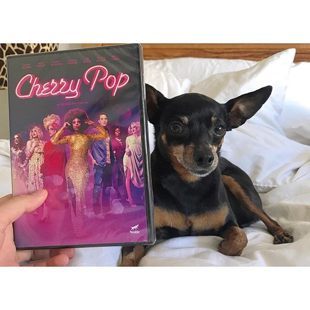 Sasha is the first to get a copy of the Cherry Pop DVD get yours on Amazon prime iTunes and Netflix DVD