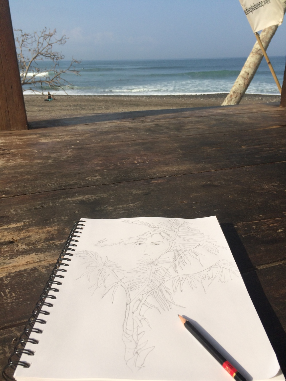Day 1: Palm trees and surf gazing