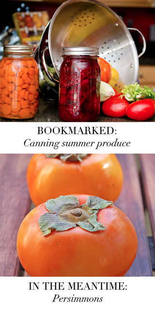 Bookmarked: Fall Vegetables