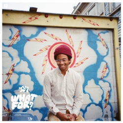 Toro y Moi -  What For?   Toro y Moi almost entirely drops his synth-pop sound he's been building for years and gains a new fan by doing so (me).  What For?  is a bright glossy psych-rock album filled with some of the best production I've heard since Daft Punk's  Random Access Memories . Great summer album.