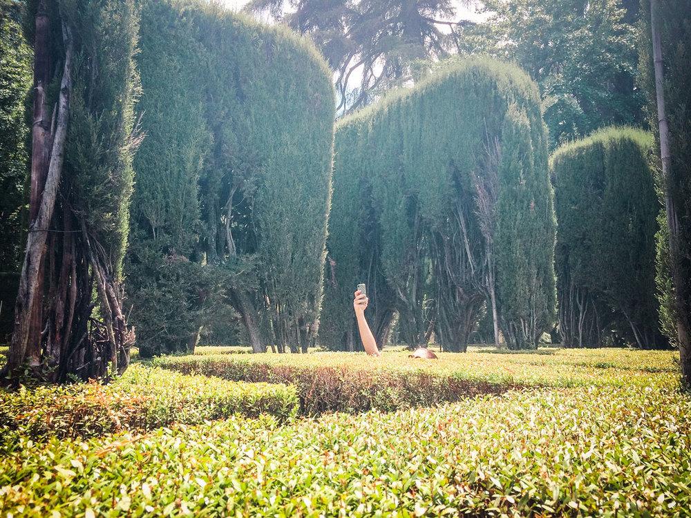 Royal Garden Maze selfie.