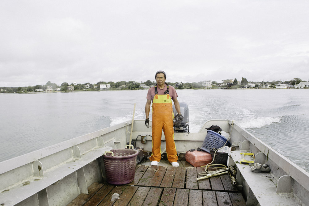 "David Lemus has worked for Matunuck Oyster for eleven years. ""When I started there was barely any other aquatic life here. Now, you see the pelicans, fish, and crabs because of us."""