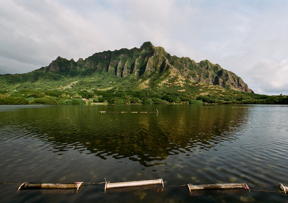 Kualoa Ranch (1 of 11).jpg