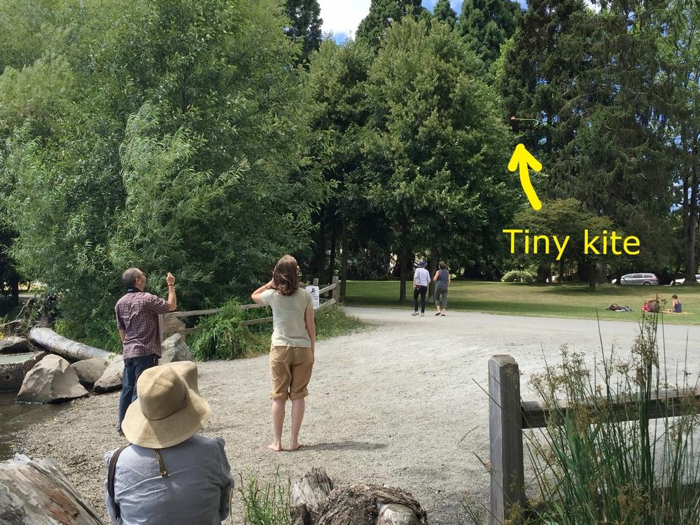 Flying the tiny kite. Green Lake Park, Seattle.  Photo by Hayashi.