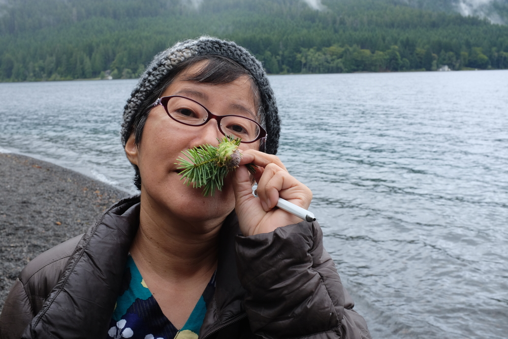 Sniffing pine cones, Crescent Lake, Olympic National Park.  Photo by Shishido.