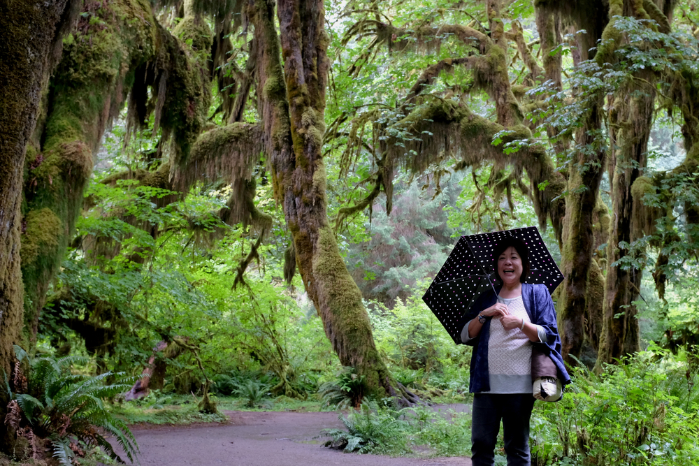 Gayle at Hoh Rainforest, Olympic National Park.  Photo by Shishido.