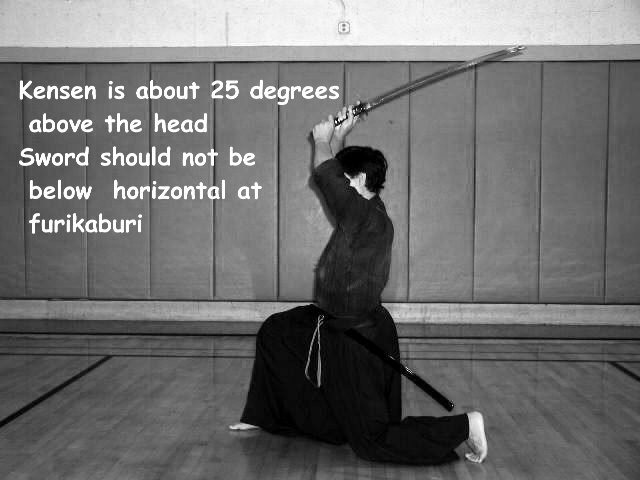 images-lesson1-ippon011.jpg