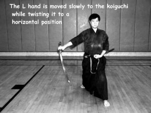 images-lesson1-ippon020s.jpg