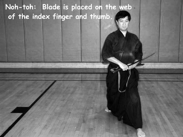images-lesson1-ippon021.jpg