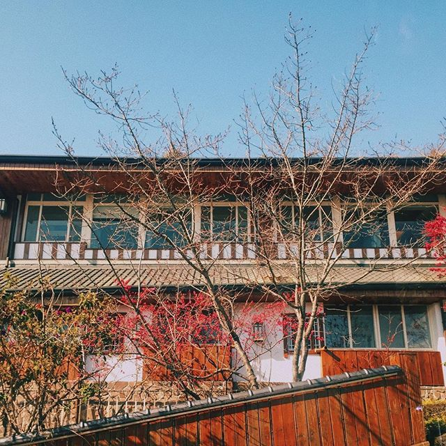 Sunny day 🌤