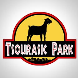 tsourasicpark.jpg