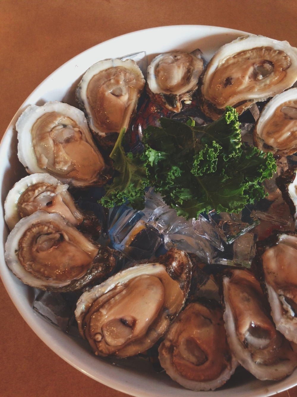 Oysters on a halfshell.