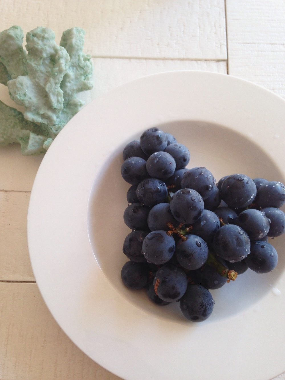 Y & I bought a huge box of these delicious grapes so we've been snacking on these sapphire jewels nonstop.