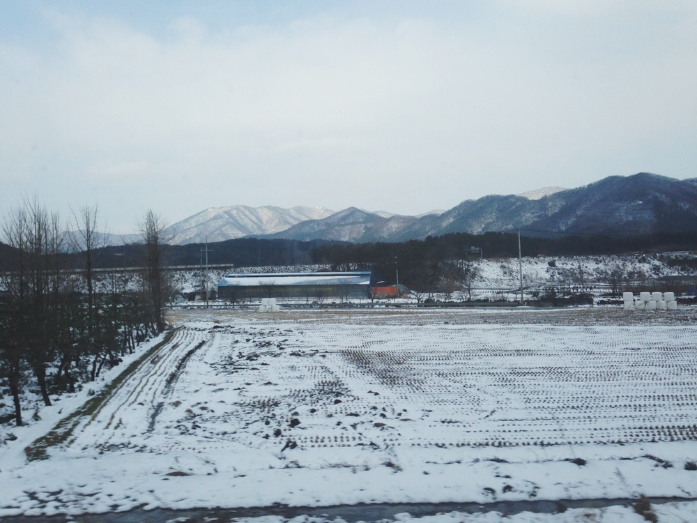 Snow covered fields in the countryside